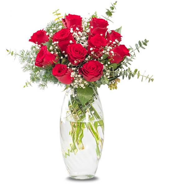 Vazoda Vazgeçilmez 11 Kırmızı Güzel